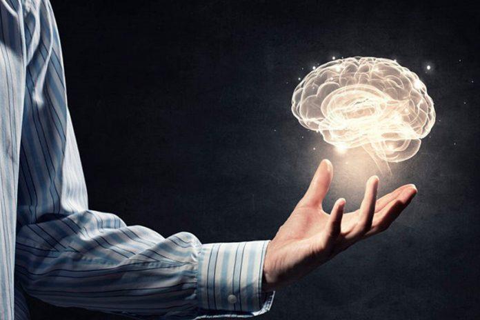 Programação Neurolinguística pnl significado